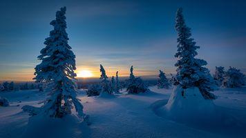Зимняя природа Финляндии · бесплатное фото