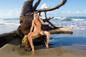 Бесплатные фото Невена Наоми,Наоми,Лили,бренди,блондинка,пляж,голая
