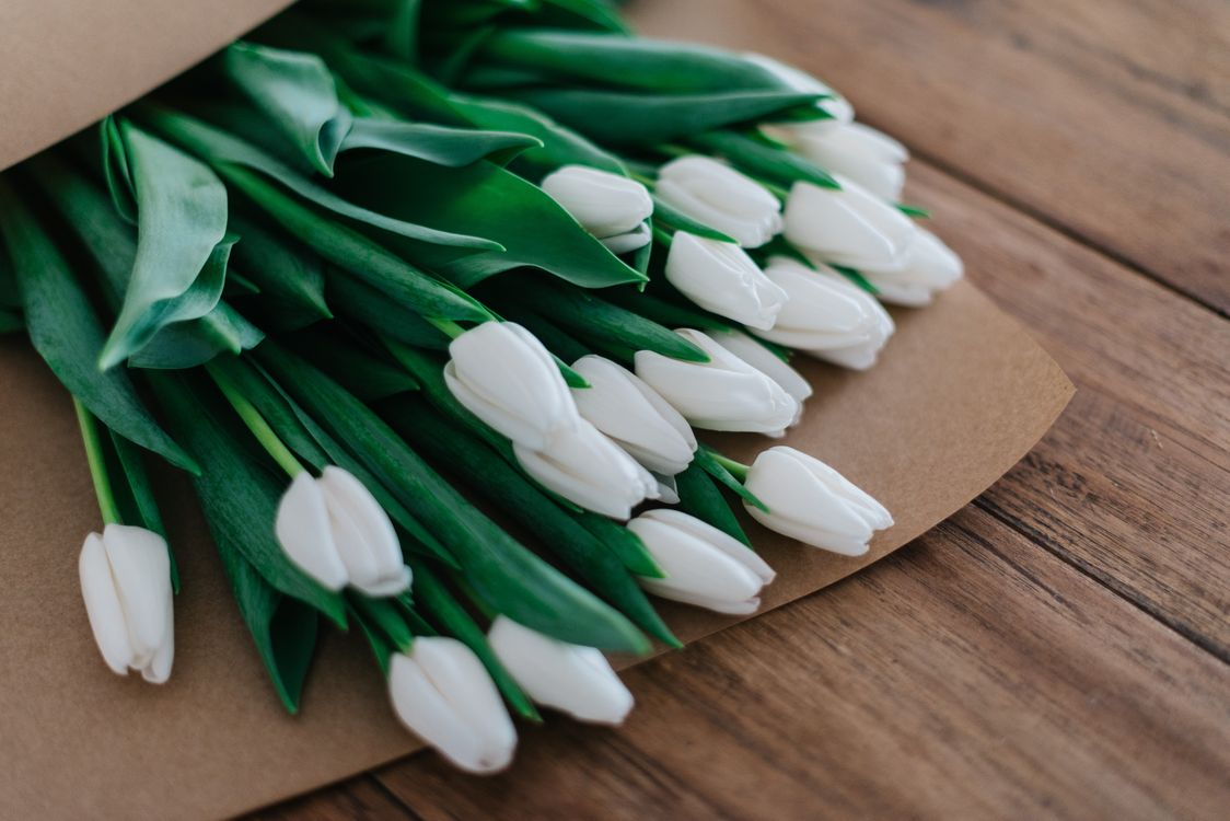 Фото бесплатно букет, белые, тюльпаны - на рабочий стол