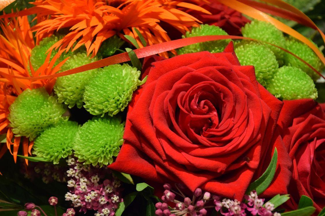 Фото бесплатно розы, букет, флора - на рабочий стол