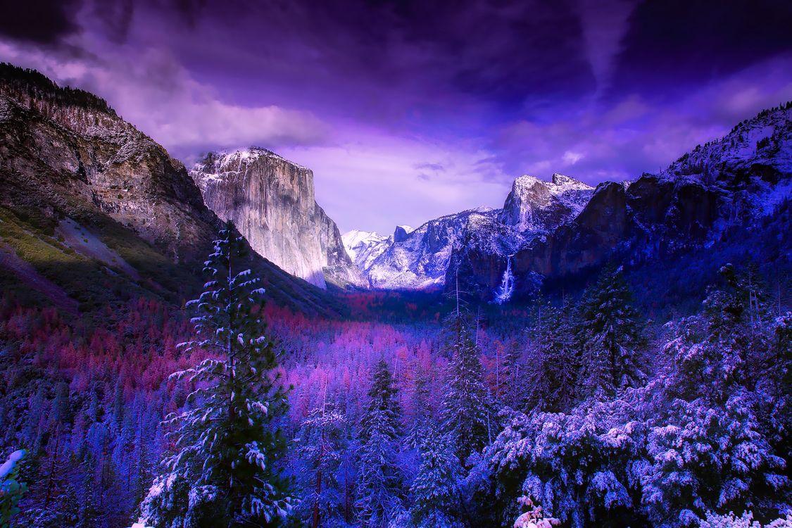 Обои йосемити, национальный парк, калифорния, горы, снег, зима, леса картинки на телефон