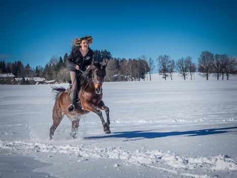 Заставки девушка, лошадь, наездница