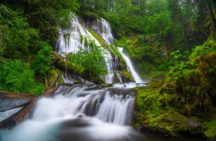 Фото бесплатно Columbia River Gorge, водопад, лес