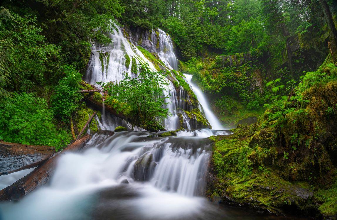 Обои Columbia River Gorge, водопад, лес картинки на телефон