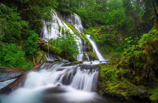 Заставки Columbia River Gorge, водопад, лес