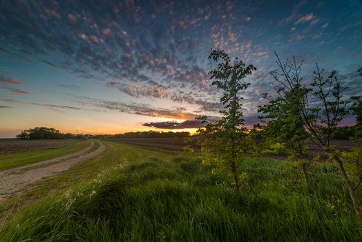 Photo free sunset, arable land, landscape