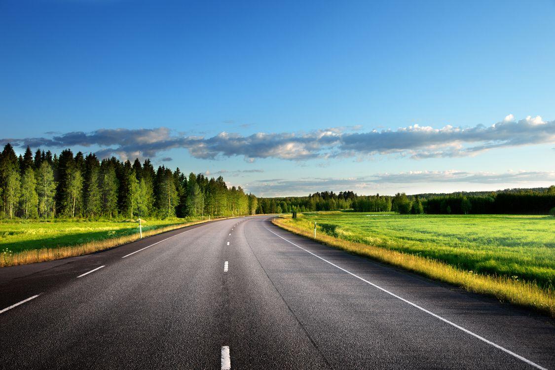 Фото бесплатно небо, лес, дорога - на рабочий стол