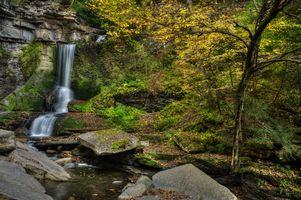 Бесплатные фото лес, деревья, река, осень, природа, пейзаж, водопад