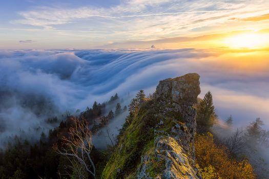 Фото бесплатно Альпы, Швейцария, море