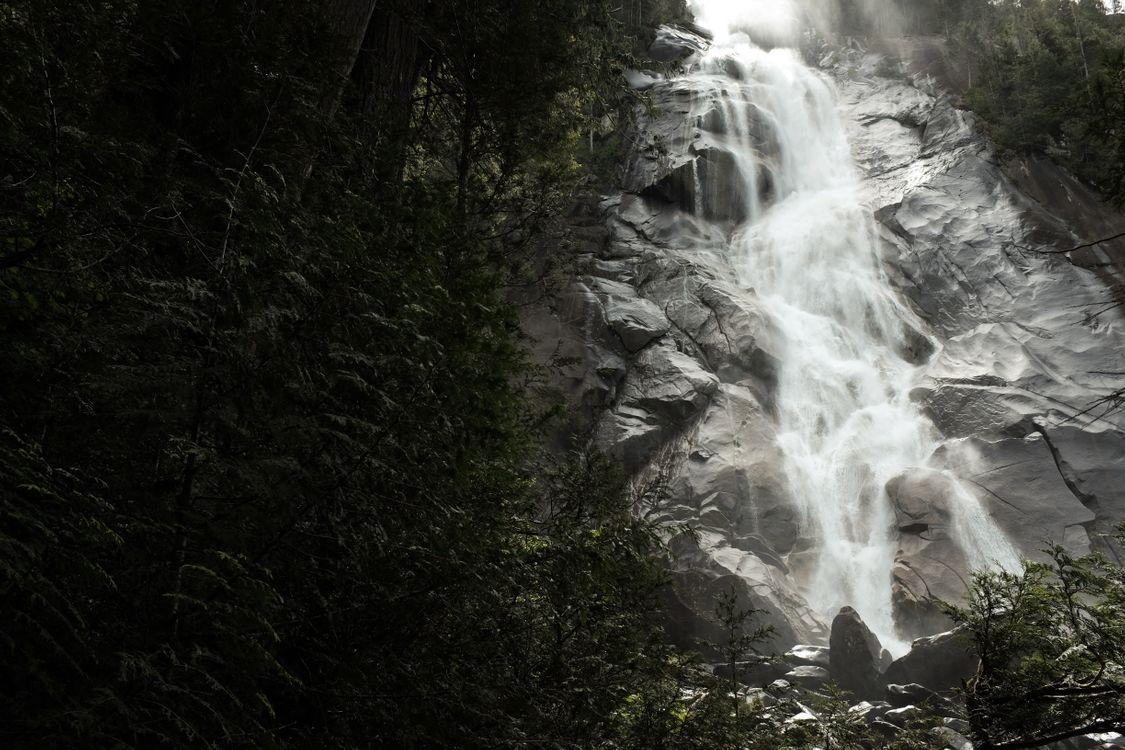 Фото бесплатно дерево, воды, природа - на рабочий стол