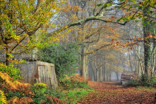 Photo free barn, road, landscape
