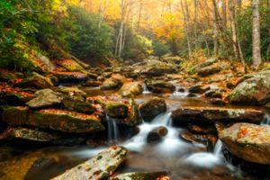Бесплатные фото осень,речка,ручей,камни,лес,деревья,водопад