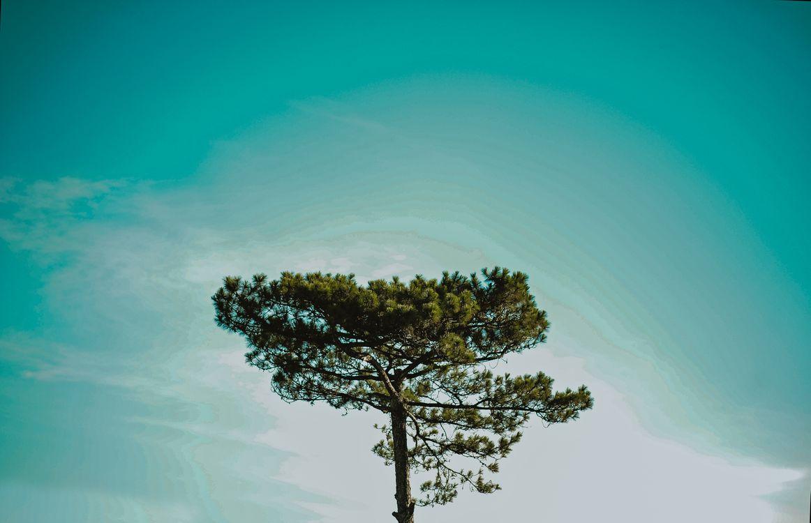 Фото пейзаж небо земля - бесплатные картинки на Fonwall