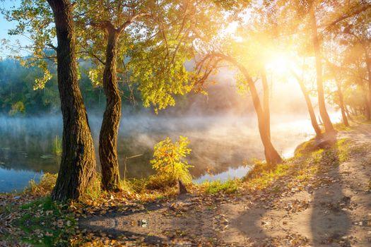 Заставки осень, красиво, туман