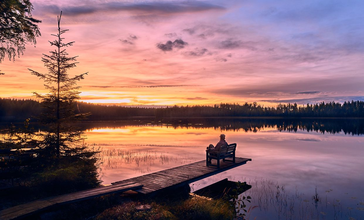 Фин сидит на мостике · бесплатное фото