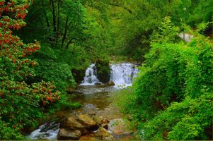 Фото бесплатно волшебная река, природа, деревья