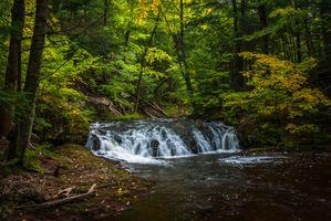 Фото бесплатно осень, лес, водопад