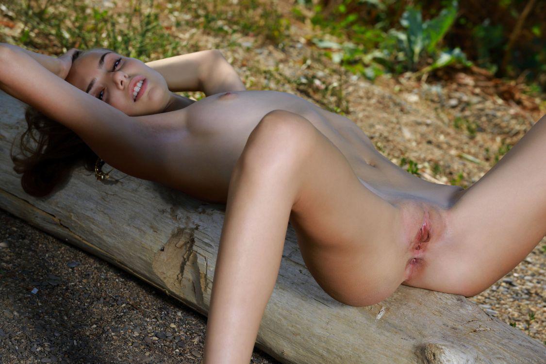 Элли Тан голышом на бревне · бесплатное фото