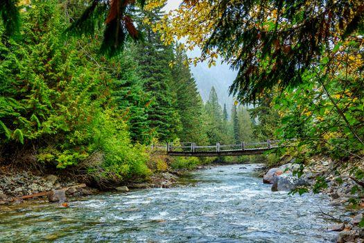 Фото бесплатно Cayoosh Creek, Duffey Lake Road, British Columbia