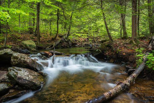 Старый ручей