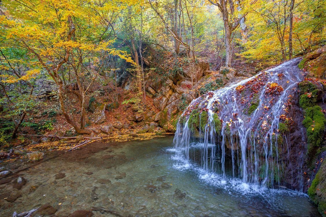 Фото бесплатно лес, водопад, осень - на рабочий стол
