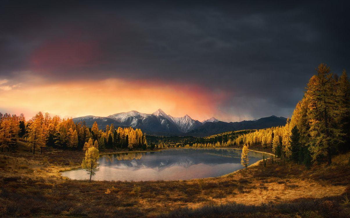 Обои Golden autumn in Altai, горы, озеро картинки на телефон