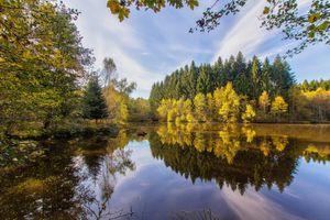 Заставки осень, пруд, деревья