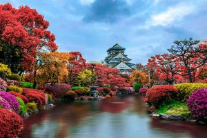 Japanese autumn Park