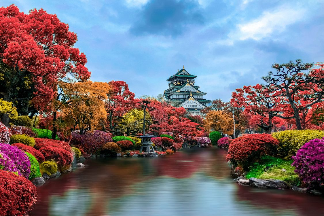 Japanese autumn Park · free photo