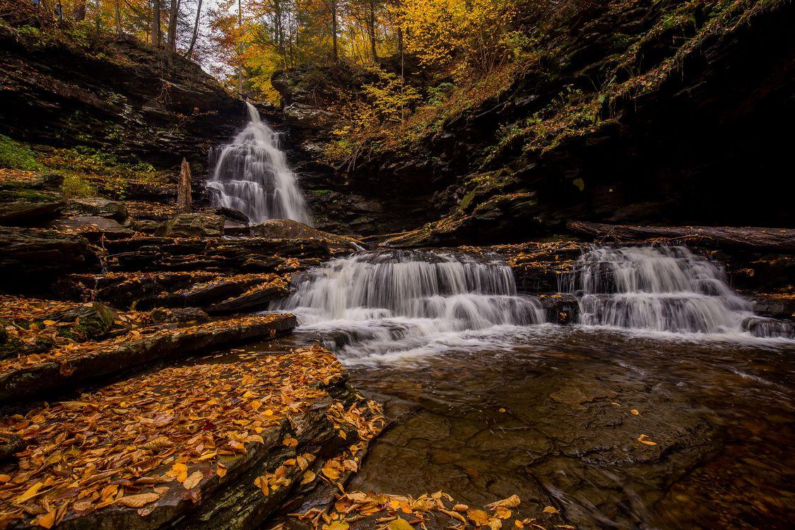 Обои камни, осенние цвета, State Park Ricketts Glen картинки на телефон
