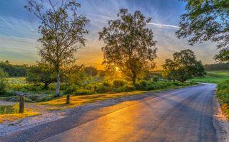 Заставки Национальный парк Нью-Форест, Англия, закат