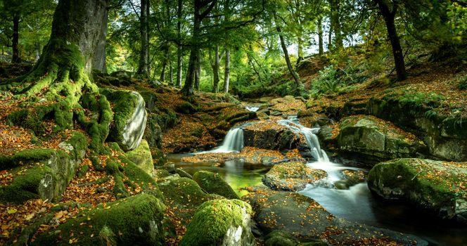 Бесплатные фото осень,река,ручей,камни,осенние листья,деревья,природа,пейзаж,осенние краски