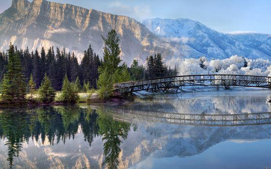 Заставки архитектура, мосты, лес