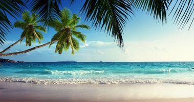 Фото бесплатно пляж, синий, побережье