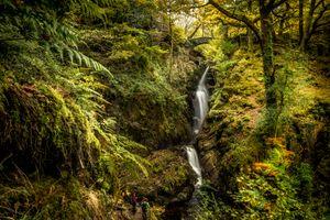 Бесплатные фото осень,водопад,река,мост,лес,деревья,краски осени