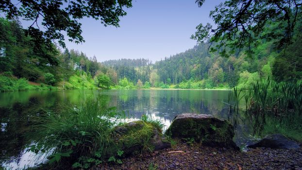 Фото бесплатно пейзаж, озеро, Nonnenmattweiher