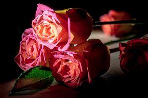 Скачать розы