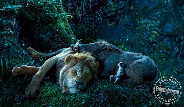 Заставки Симба,Тимон,Пумба,отдых,спят,Король лев,2019