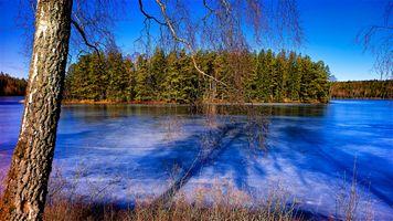 Фото бесплатно лед, высокий берег, море