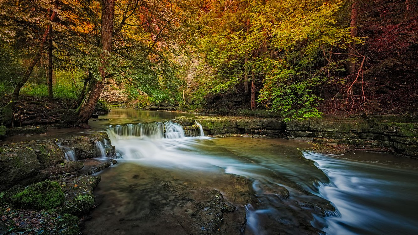 Фото бесплатно creek, waterfall, forest - на рабочий стол