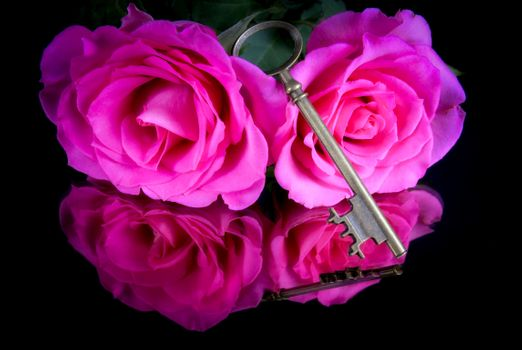Photo free key, floral, flowers