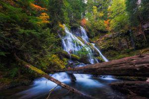 Бесплатные фото Panther Creek Waterfalls,Portland,осень,водопад,лес,деревья,природа