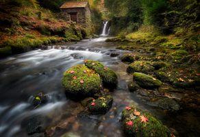 Заставки Амблсайд, красивый ручей, Lake District National Park