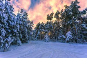 Бесплатные фото зима,дорога,закат,снег,лес,деревья,природа
