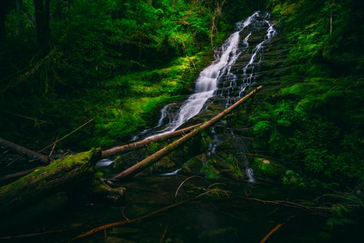 Photo free Lower Hopkins Creek Falls, Washington, waterfall