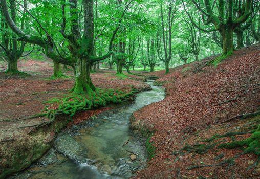 Photo free Otzarreta, Basque Country, Spain