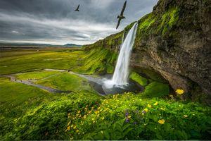 Фото бесплатно Seljalandsfoss, Водопад Сельяландсфосс, Исландия