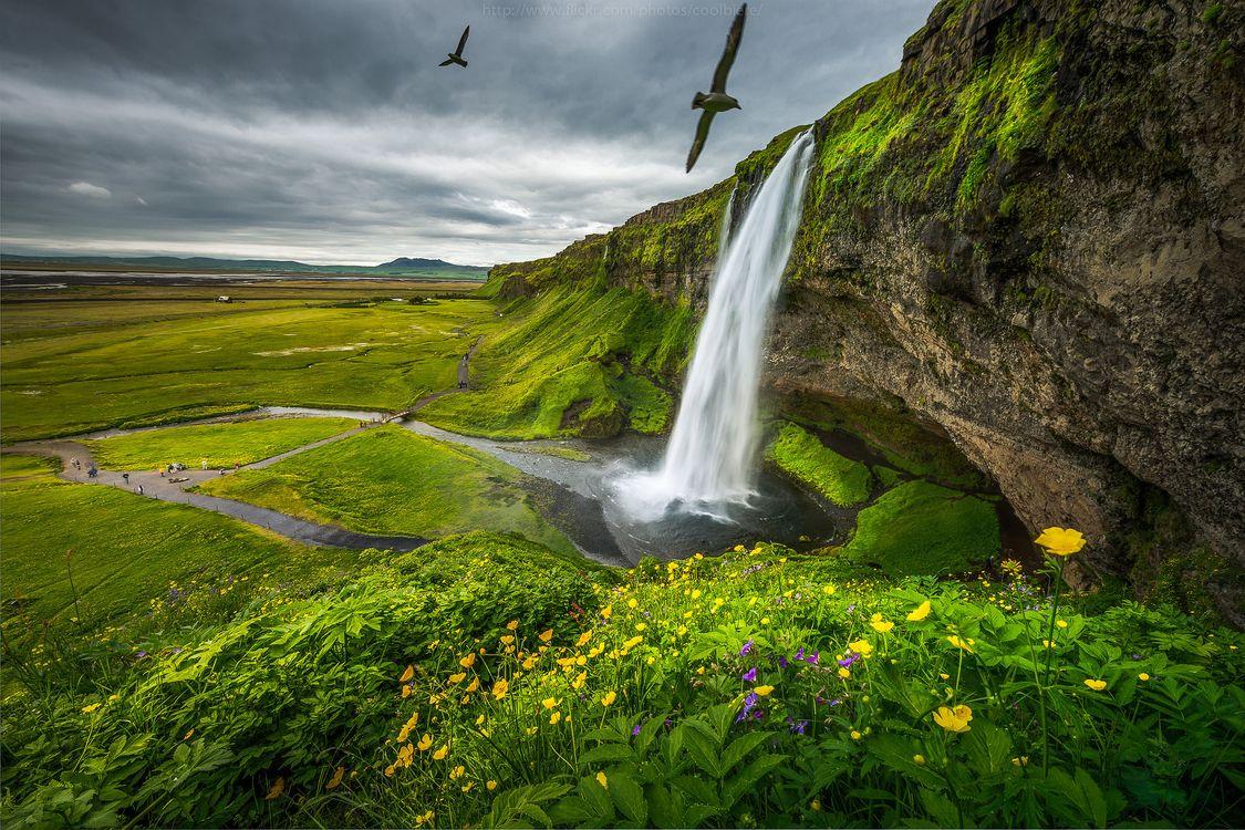 Фото бесплатно Seljalandsfoss, Водопад Сельяландсфосс, Исландия, пейзажи