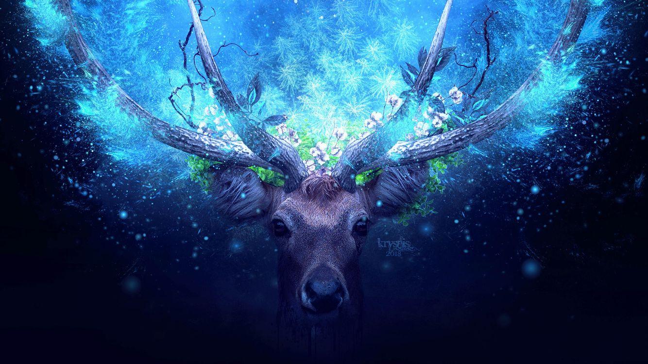 Фото бесплатно Deer, Artist, работа - на рабочий стол