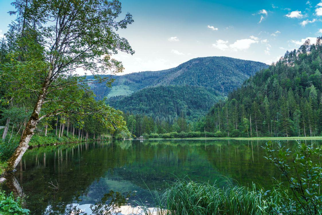Фото бесплатно холмы, пейзаж, лес - на рабочий стол